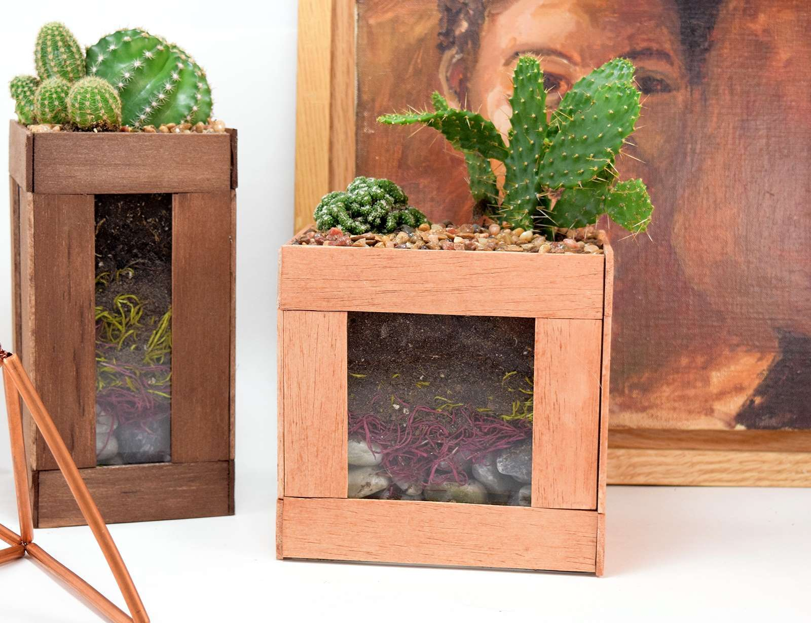 Picture of How to Glue Wood to Glass - Simple Cactus Terarriums