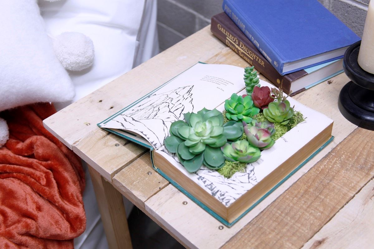 Picture of Succulent Book Planter