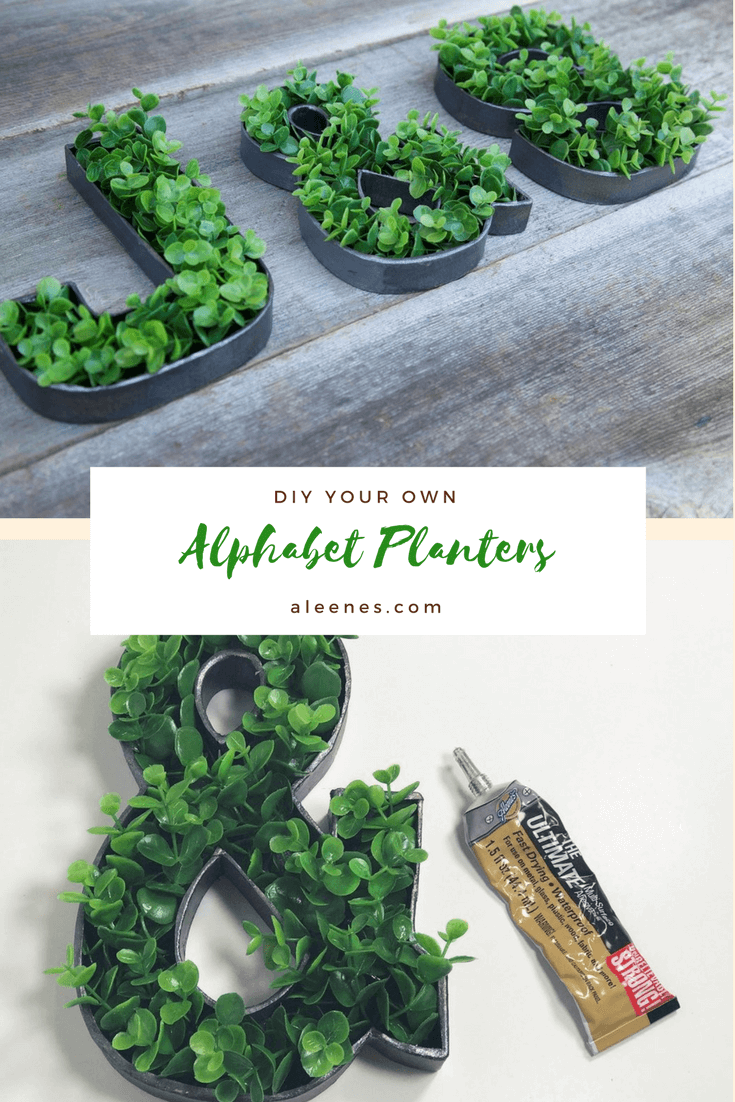 Picture of DIY Alphabet Planters