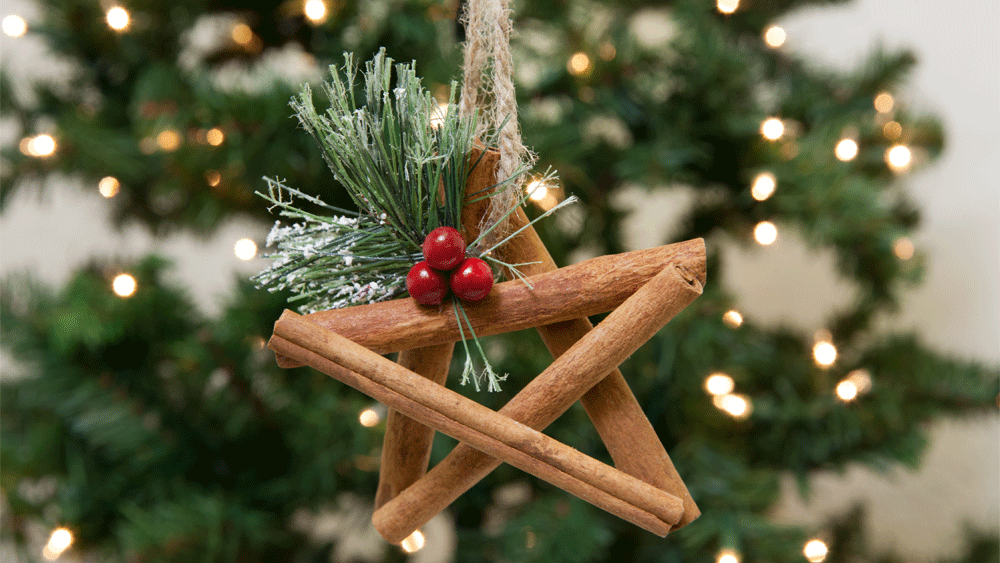 Picture of DIY Cinnamon Stick Star Ornament