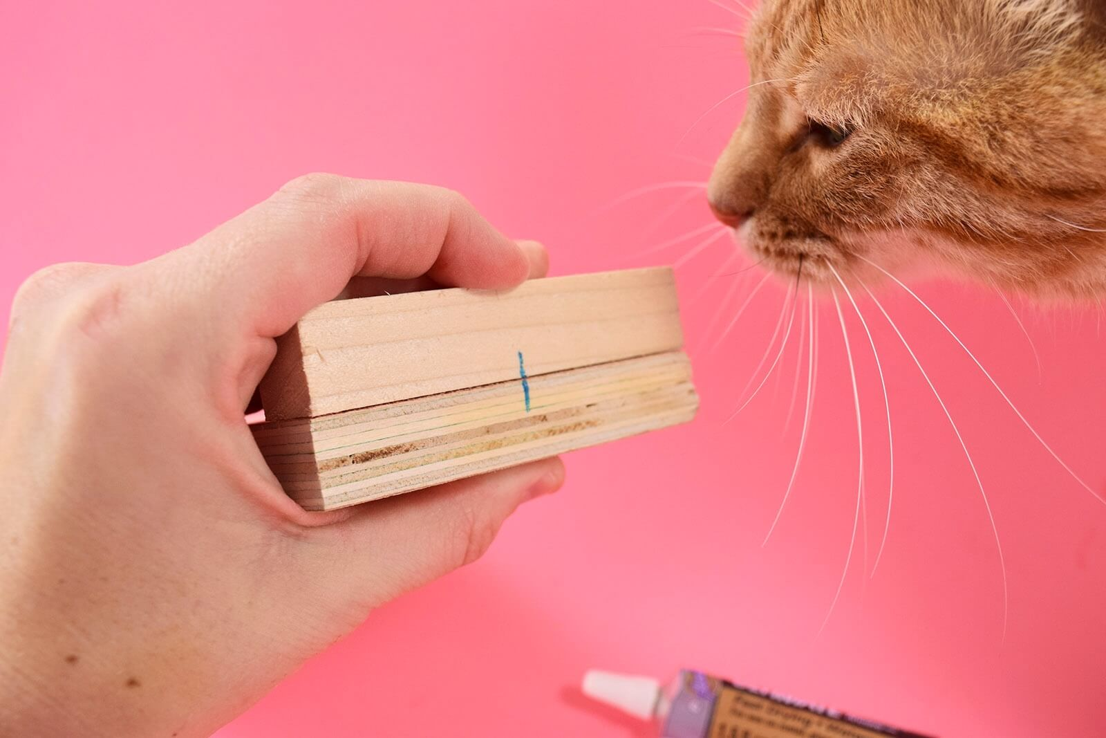 DIY Cat Shaped Smart Phone Holder from Wood Step 3