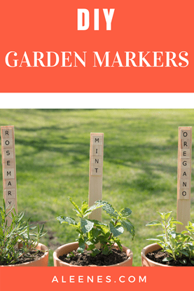 Picture of DIY Garden Markers