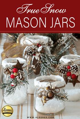 Picture of True Snow Mason Jars