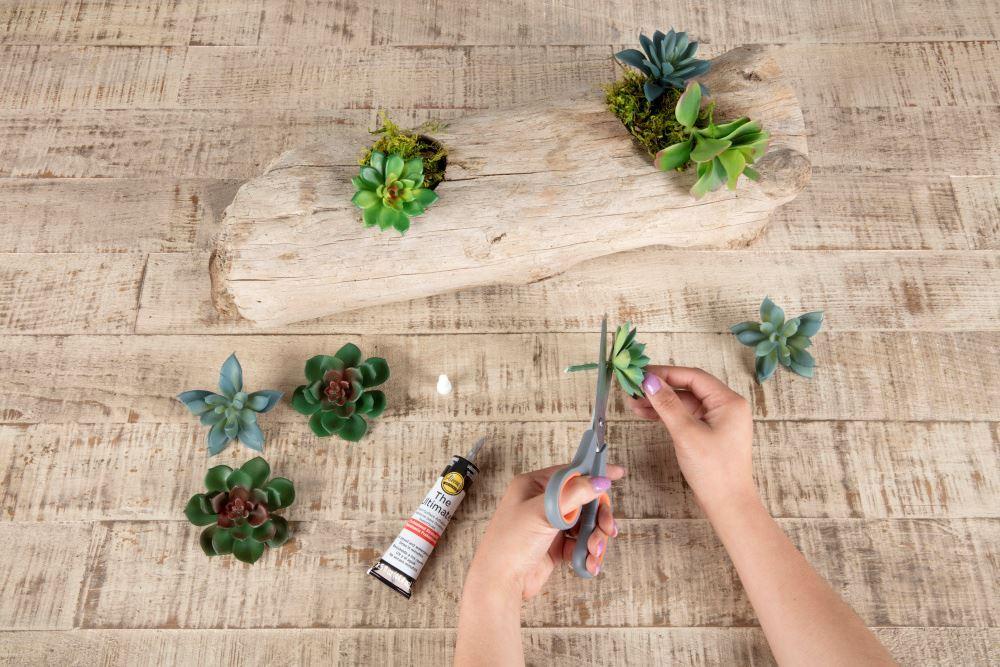 Aleene's Driftwood Succulent Planter - cut stems