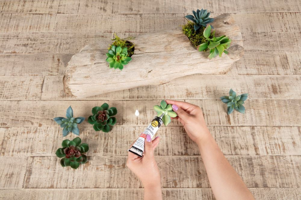 Aleene's Driftwood Succulent Planter - glue succulents