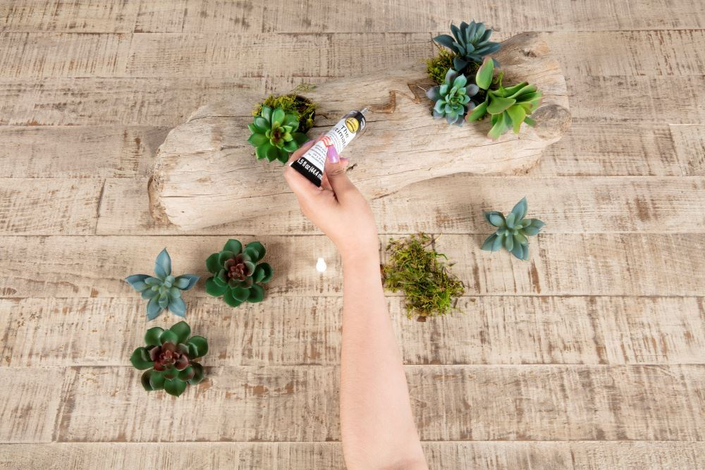 Aleene's Driftwood Succulent Planter - glue moss