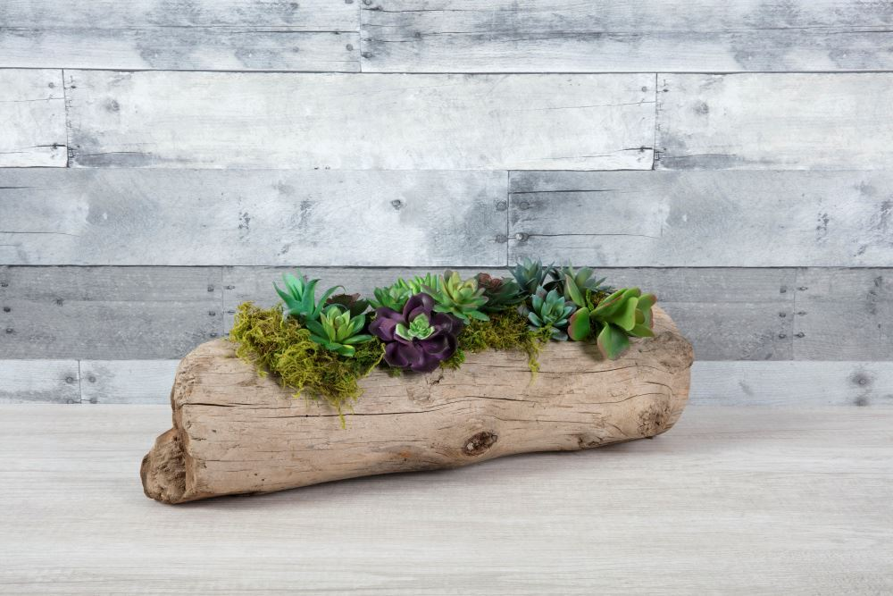 Aleene's Driftwood Succulent Planter - add more succulents