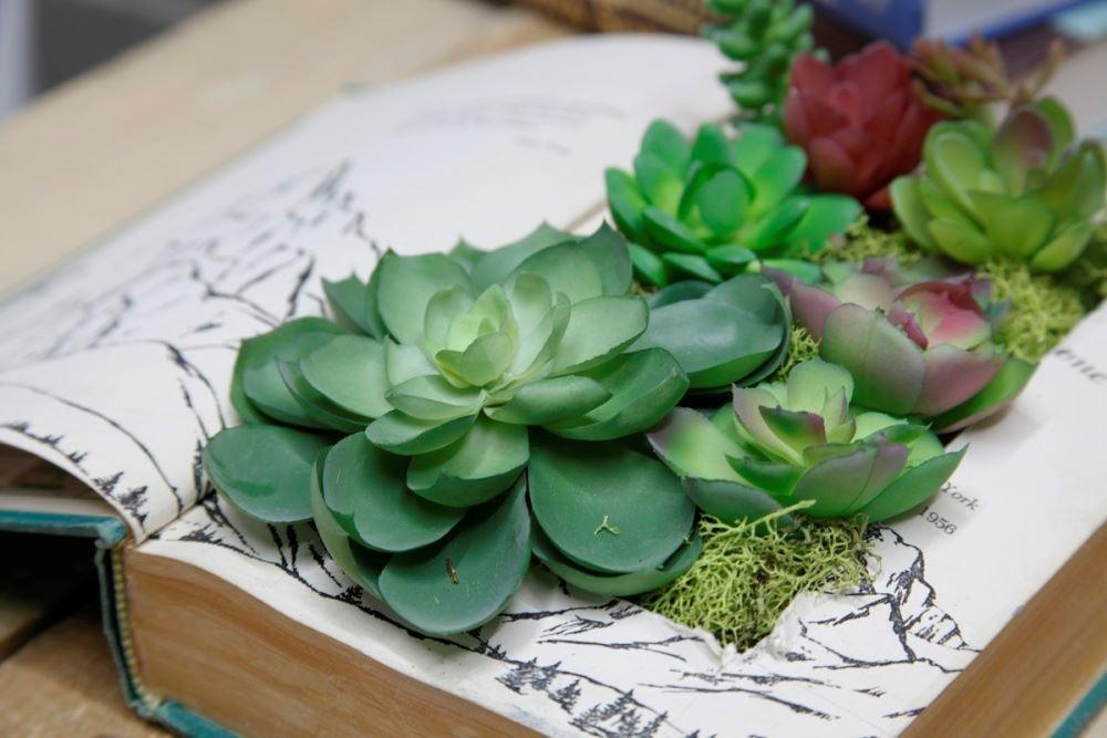 Aleene's Succulent Book Planter