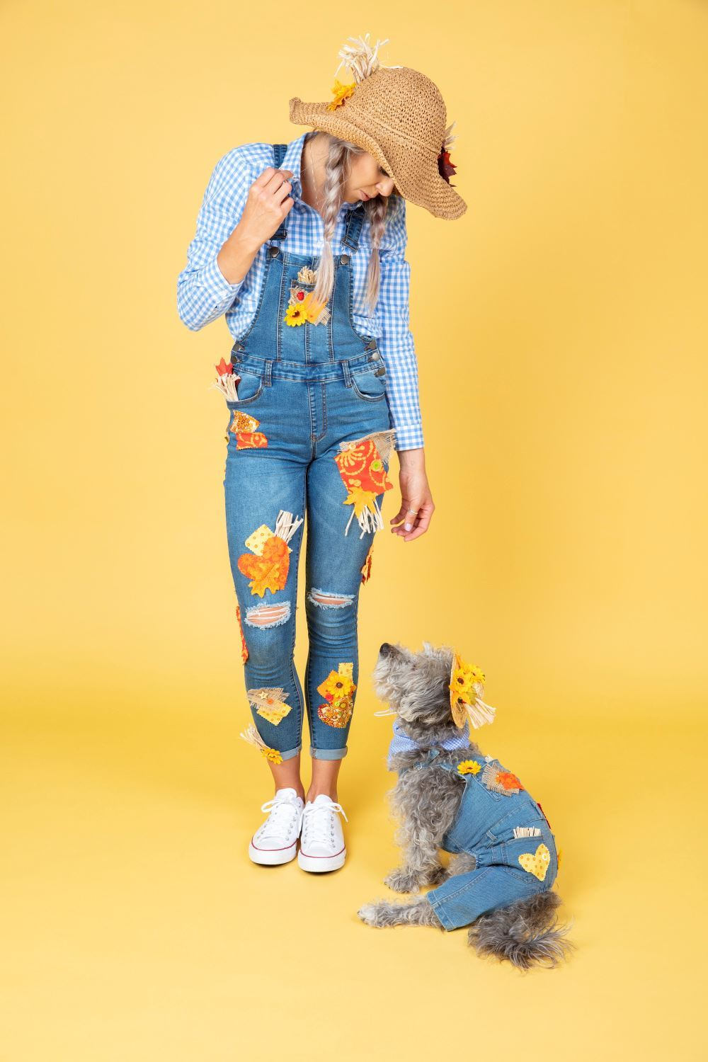 Aleene's Pet & Owner Matching Scarecrow Costumes