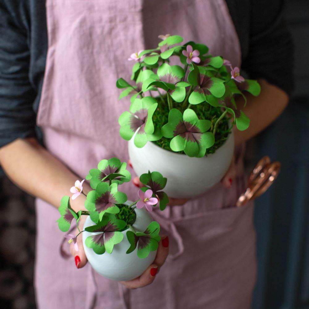 Aleene's Pretty Paper Clover Plants DIY