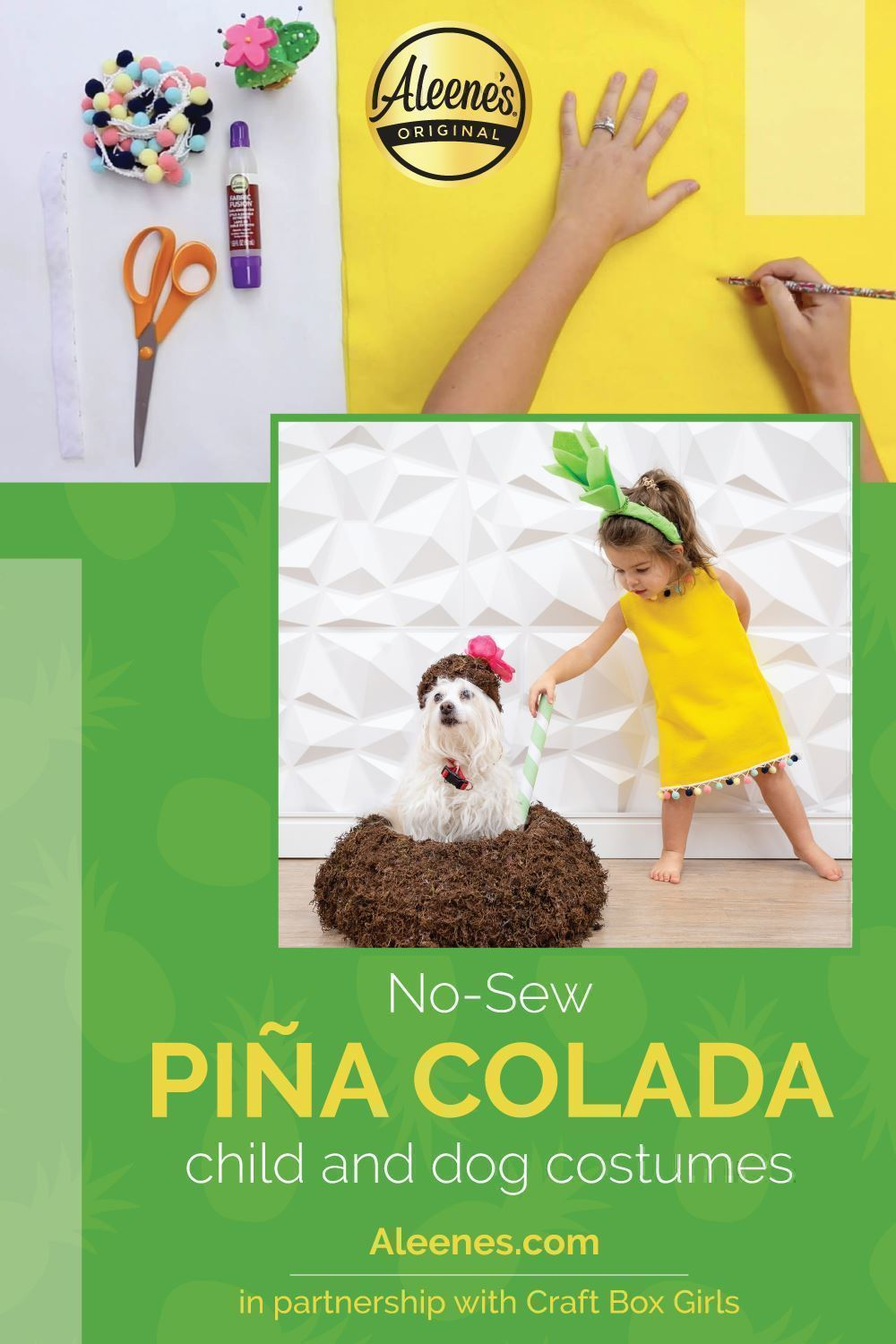 Piña Colada Child and Dog Costumes