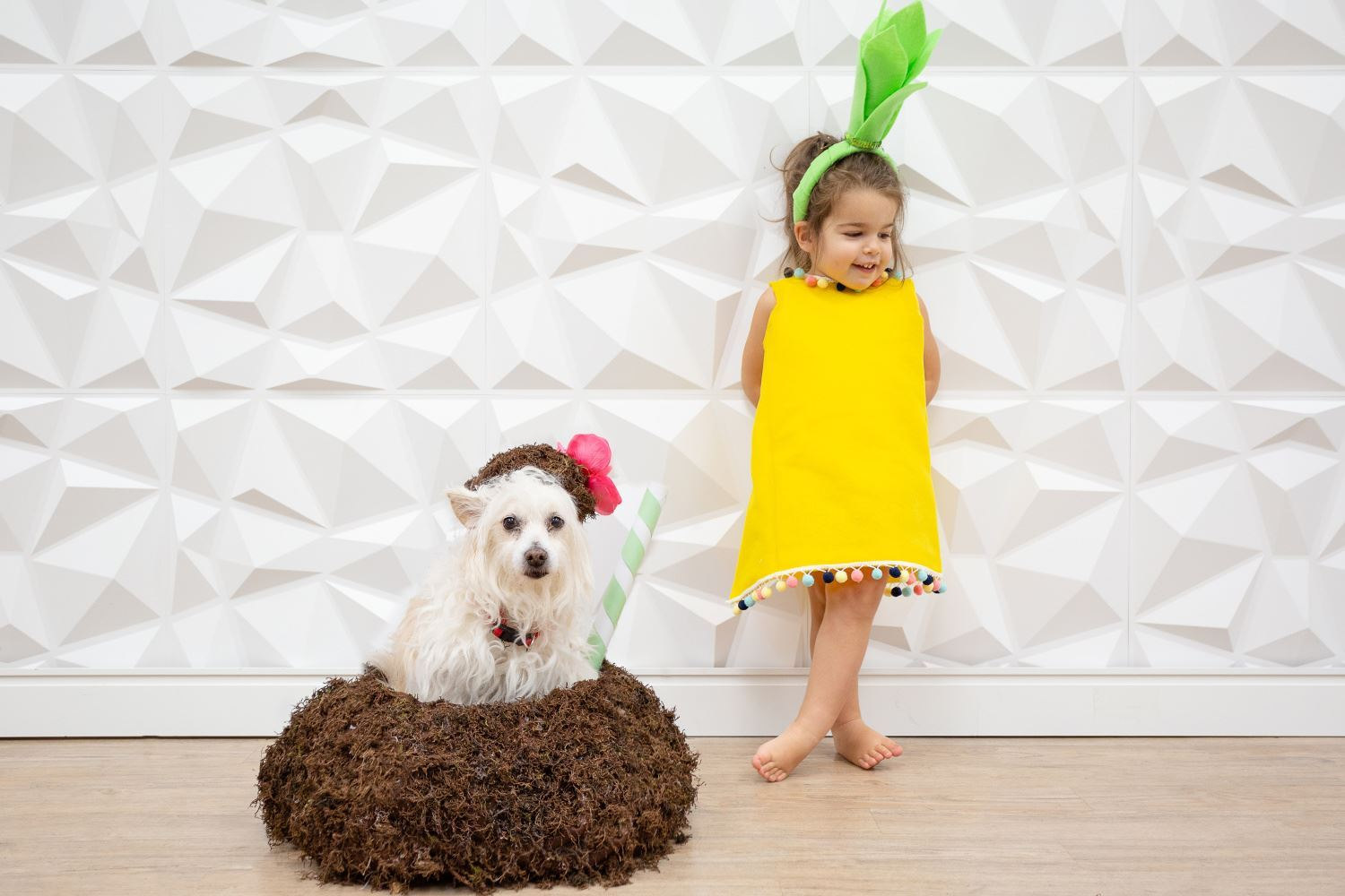 No-Sew Kid and Dog Halloween Costumes