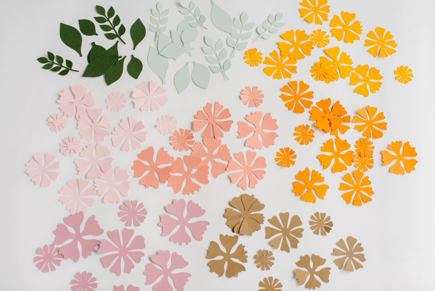 Cut out flower and leaf shapes